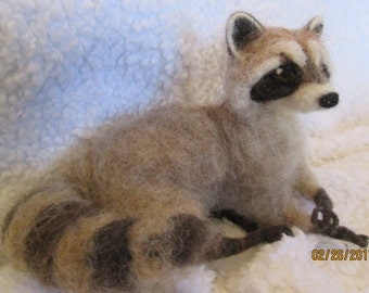 needle felt animal, Life sized young raccoon  custom made for me by Hannah Stiles fully posable, finest needle felt work around