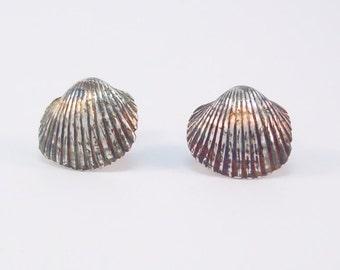 Fine Silver Sea Shell Studs