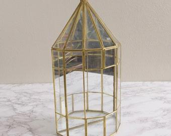 """Vintage 15"""" Glass Curio Display Terrarium"""