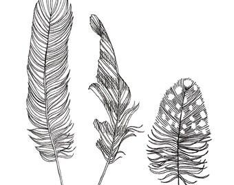 Postcard Feathers, Illustrated Postcard, Pen