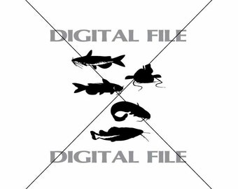 Five Catfish Vector Images Vinyl Decal T-shirt Digital Cutting Files ,Svg File, Ai, Eps, Dxf
