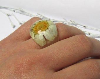 Daisy Ring Nature Ring Real Daisy Jewelry Resin Ring Flower Ring for Her Daisy Jewelry Resin Jewelry Womens Ring Statement Real Flower Ring
