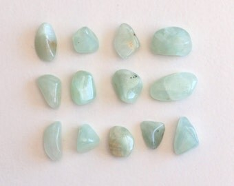 Tumbled Gemstone - Prehnite  - Tumbled Stone - Polished Stone, 13 pieces