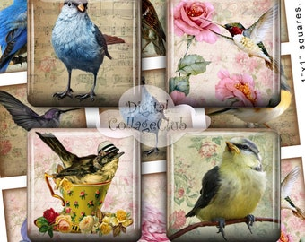 Magical Birds 1 x 1 Inch Digital Collage Sheet Square Images for Scrabble Tiles Scrapbooking Decoupage Cardmaking Jewelry Making