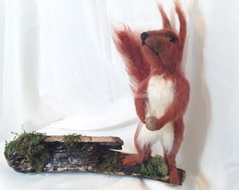 needle felted red squirrel ,  mounted red squirrel