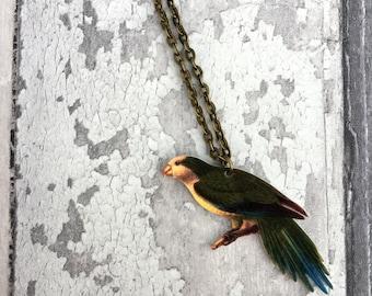 Quaker Parakeet Monk Parrot Bird Necklace