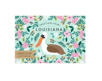 Louisiana State Bird Postcard - Set of 8