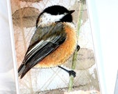 "CHICKADEE #1 Mixed Media, 5"" x 7"" w/White Envelope, Blank Notecard: Birds of the East Coast HANDMADE Black-Capped Chickadee"
