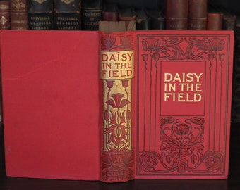 Victorian Decorative Book - 1880s - Daisy in the Field by Susan Warner