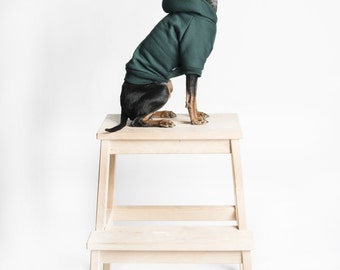 Dog / cat Hoodie - Dark green -  Handmade pet clothes - Ideal for dogs,  puppies and cats - Keep your pets warm and looking awesome