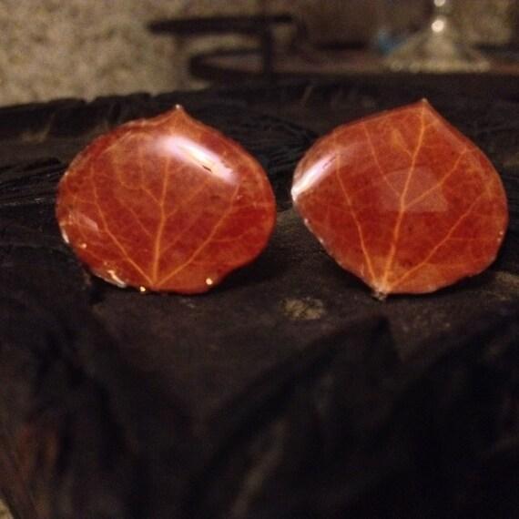 SALE Vintage Cufflinks Made from Aspen Leaf Earrings