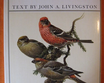 Birds of the Northern Forest by John A. Livingston