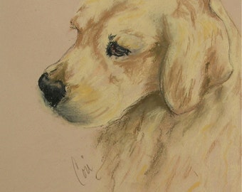 Golden Retriever Original Pastel Drawing Dog Art Framed and Matted by Cori Solomon