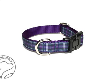 "Pride of Bannockburn Tartan Dog Collar / 3/4"" (19mm) Wide / Purple Plaid / Martingale or Side Release / Choice of collar style and size"