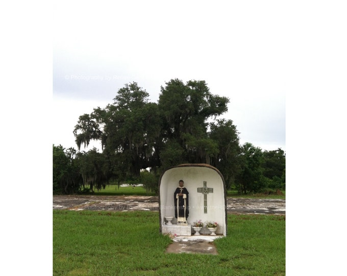Saint Grotto in the Bayou Photo