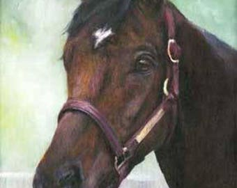 Horse Portrait, Pet Portrait, Horse Paintings, Oil Paintings, Catherine's Studio Art, Inspirational Paintings, Portrait Paintings