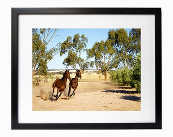 Horses photo wall art home decor 6'x8' photo in 8'x10' white matte frame mount on backing board Horses Countryside Home decoration picture