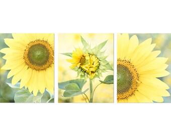 Sunflower Photos, Sunflower Art, Farmhouse Kitchen Decor, Sunflower Print Set, Rustic Home Wall Art, Sunflower Canvas Art, Yellow Wall Art
