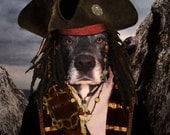 PET PORTRAIT - Pirate Custom Dog Portrait. Pirate Custom Cat Portrait. Personalized pet portrait. Dog portrait. Pet portrait. Cat Portrait.