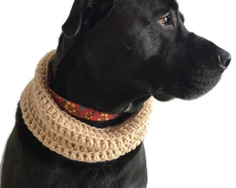 Canine Crochet Cowl.  Pet fashions.  Fall fashion.  Pet photography.  Cute. Gift.  Funny.  Made in Canada.  Worldwide shipping.  Fur baby.