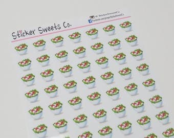 Veggie Salad Planner Stickers