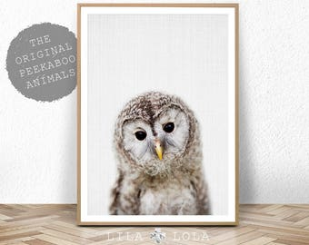Owl Print, Nursery Wall Art Decor, Woodland Animals, Baby Shower Gift, Girl, Boy, Large Printable Digital Download, Baby Animal Prints