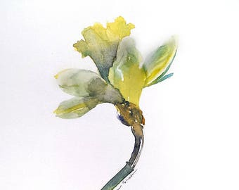 Daffodil painting, original daffodil watercolor, 8x10 daffodil artwork, yellow daffodil single flower, modern floral