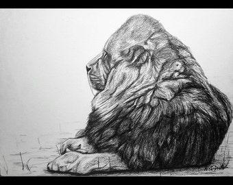 Hand-drawn Lion Print