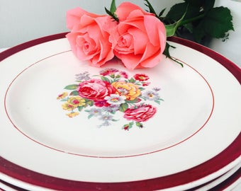 Delightful Set of Four Vintage Floral Dinner Plates