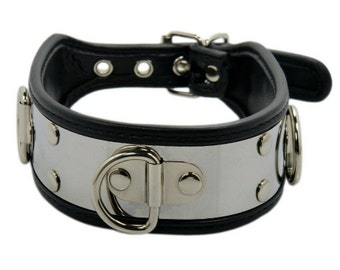 Collar padded with stainless steel