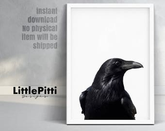 Raven print, raven art, bird print, digital print, raven photo, black raven print, odins raven, modern art print, gothic print, crow photo