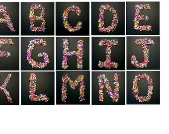 Two Art letters, Alphabet, Picture letters, Photography letters