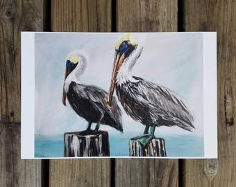 Pelicans Pelican Sitting Art Print