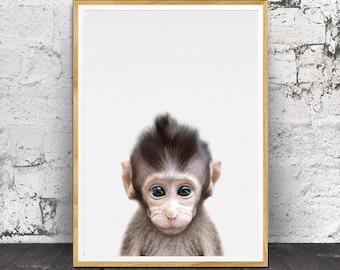 Baby Monkey Print, Baby Monkey Wall Art, Baby Animal Prints, Baby Monkey Photo, Baby Room Decor, Animal Prints, Nursery Animal Print, Animal