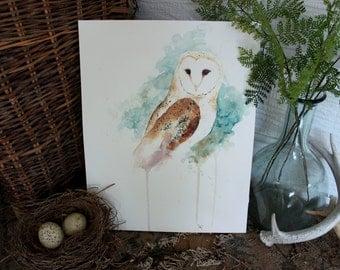 Barn Owl Watercolor PRINT -SALE-buy 2 get 1