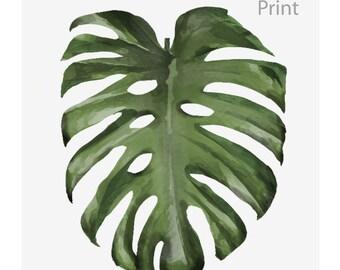 Download a monstera leaf, decoration, tropical, Scandinavian