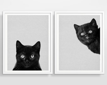 Cat art print, Set of 2 prints, Wall art,Art print,Cat print,Cat photography,Black cat,Nursery animal,Animal print,Pet print,Cat decor