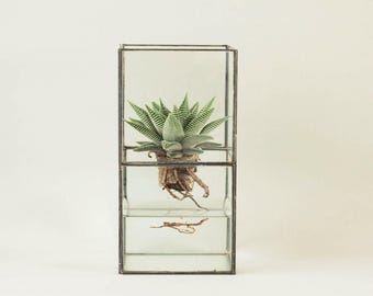 Geometric glass terrarium including cactus-Indoor planter-Tiffany stained glass-Minimalistic-Glass planter-Modern home decor