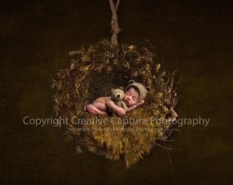Newborn Digital backdrop / background / hanging nest