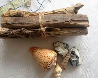Decoration object Driftwood bundle IV
