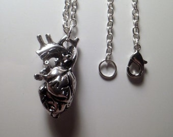 Anatomical Heart Necklace + Length variable + silver plated