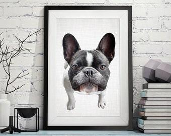 French Bulldog Print, Dog Print, Animal Print, Nursery Print, Puppy Print, Dog Art, Wall Art, Poster, Prints, Dog Photography, Puppy Art,129