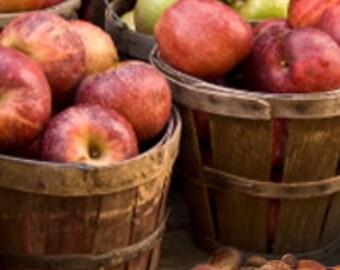 1oz Apples & Acorns Fragrance Oil - Fragrance Oil for Skincare, Soap Fragrance, Phthalate Free Fragrance