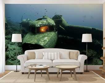 Plane underwater wall mural, peel and stick, wall covering, temporary wallpaper, wall art