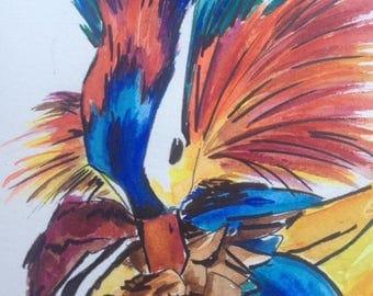 Mandarin Duck Watercolour