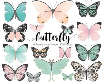 Pink and Mint Butterfly Clip art 300 dpi Png