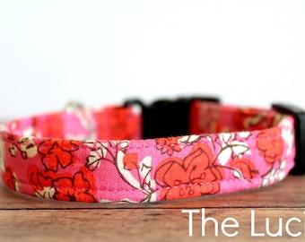 "Chic Dog Collar, Girl Dog Collar, Pretty Dog Collar, Buckle Dog Collar, Flower Dog Collar, Boho Dog Collar ""The Lucie"""