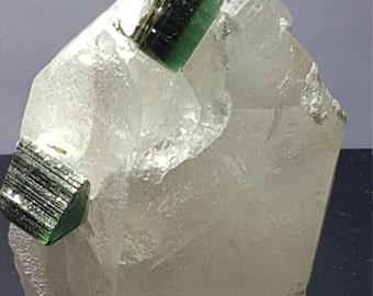 2 Green cap Tourmaline crystal terminated top on sitting on Quartz matrix