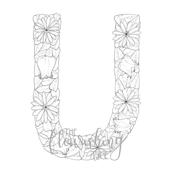 Printable Colouring Page Letter U Floral Inspired Ursinia
