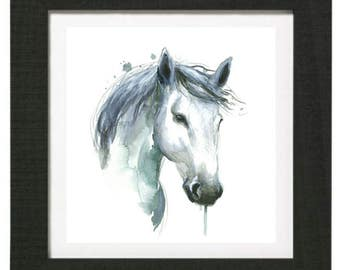 Head horse white reproduction formats of your choice